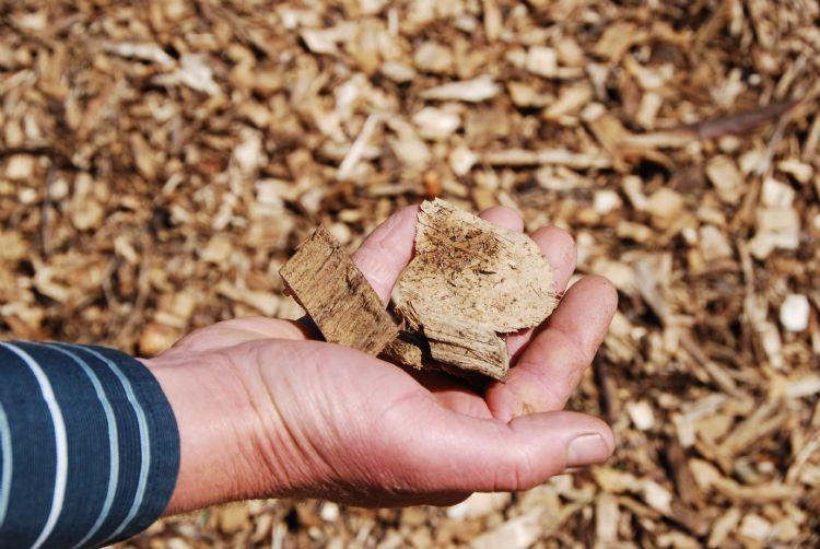 Opdrachtgevers gebruiken steeds vaker houtchips als bodembedekking of strooisel voor plantvakken.