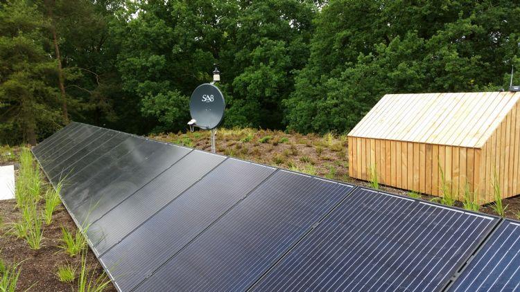 Een heidedak in Bergen op Zoom. Een intensief dak met speelelementen en boslandschap met heide. Het project is tot stand gekomen via de architect, waarbij Van Zetten de technische kennis leverde. De oplevering was in 2018.