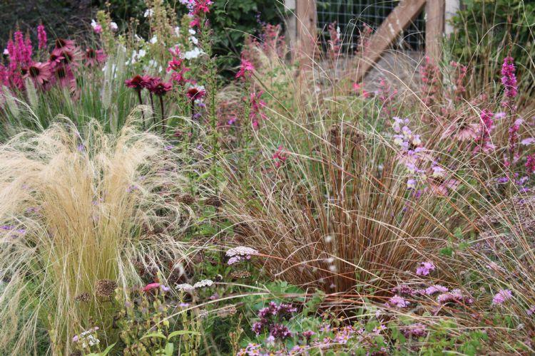 Lageschaar Prairie Garden Spinel-mengsel