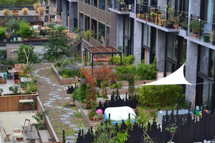 ovenaanzicht van de vijf tuinen op de daken van woningen aan de Haparandaweg in Amsterdam. De tuinen hebben ieder hun eigen inrichting. Via het achterommetje met sedum en looptegels kunnen de bewoners bij elkaar langsgaan.