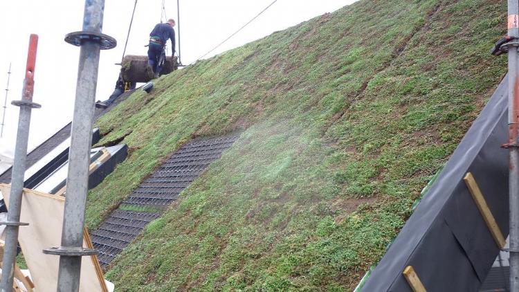 Als iedereen een groen dak op zijn schuur zou aanleggen, zou dat een grote stap richting klimaatadaptatie betekenen.